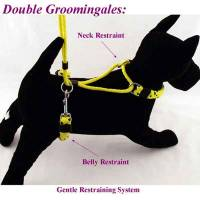 Dog Grooming Supplies - Dog Grooming Harness - Double Grooming Harness