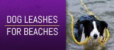 Dog Leashes for Beaches