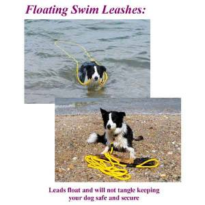 "1/2"" Polypropylene Swimming Dog Slip Leash 30 Ft"
