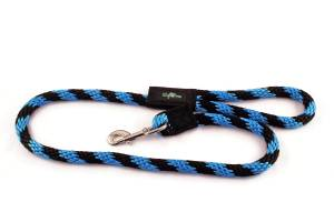 4 foot long dog snap leash