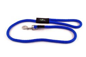 4 foot ong dog snap leashes