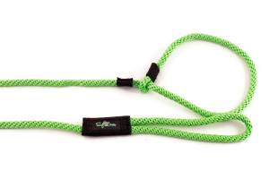 10 foot long slip leashes