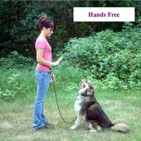 dog leashes for training, arthritic and handicap friendly dog leashes, multi purpose dog leash shown hand free