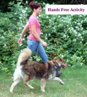 dog leashes for training, arthritic and handicap friendly dog leashes, multi purpose leash shown hands free activity