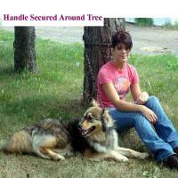 Dog leashes for training, arthritic and handicap friendly leashes dog leashes, multi purpose dog leash shown secured around a tree