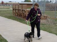 "Arthritic and Handicap Friendly Dog Leashes - Multi-Purpose Hands Free Dog Leashes - 5/8"" Round Hands Free Dog Leashes (Polypropylene)"