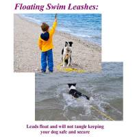 "Stainless Steel Spring Hook Leashes - 1/2"" Diameter - Soft Lines, Inc. - 10 Foot Swimming Dog Snap Leash 1/2"" Round"